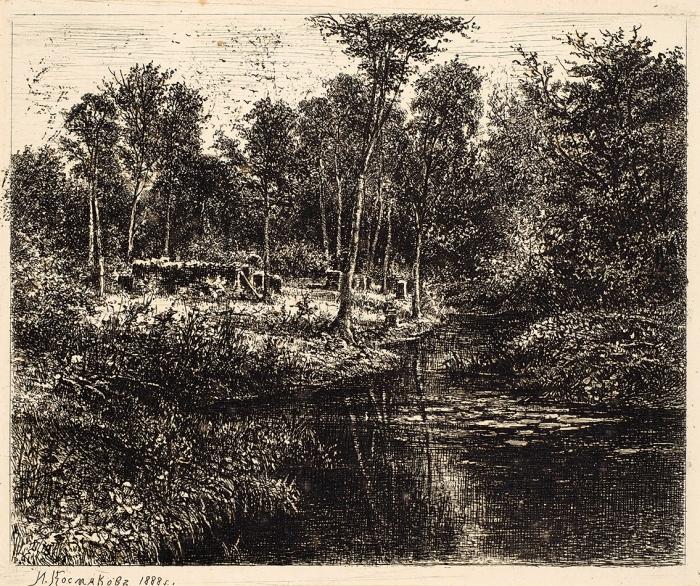 Космаков Иван Александрович (1847–1894) «Вырубленный лес». 1888. Бумага, офорт, 20x28см (лист), 14x17см (оттиск).