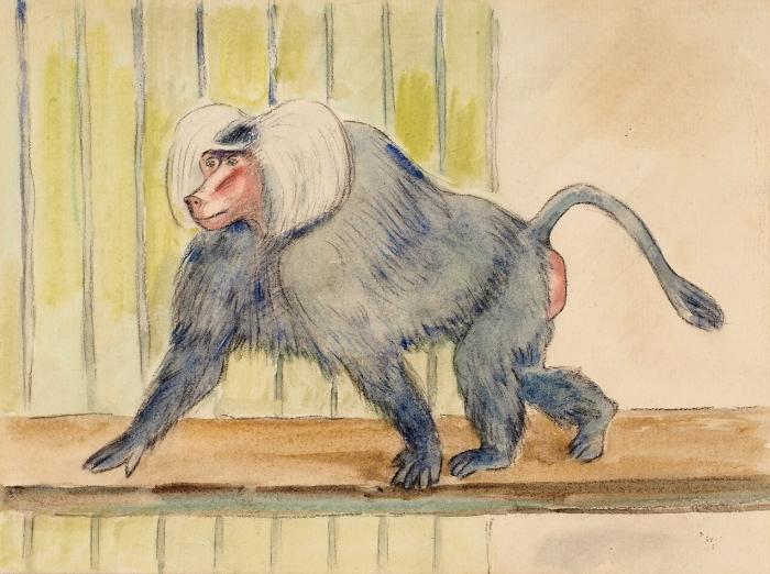 Тырса Николай Александрович (1887–1942) Эскиз иллюстрации кдетской книжке «Зоологический сад». 1940. Бумага, акварель, 17,5x23,5см.