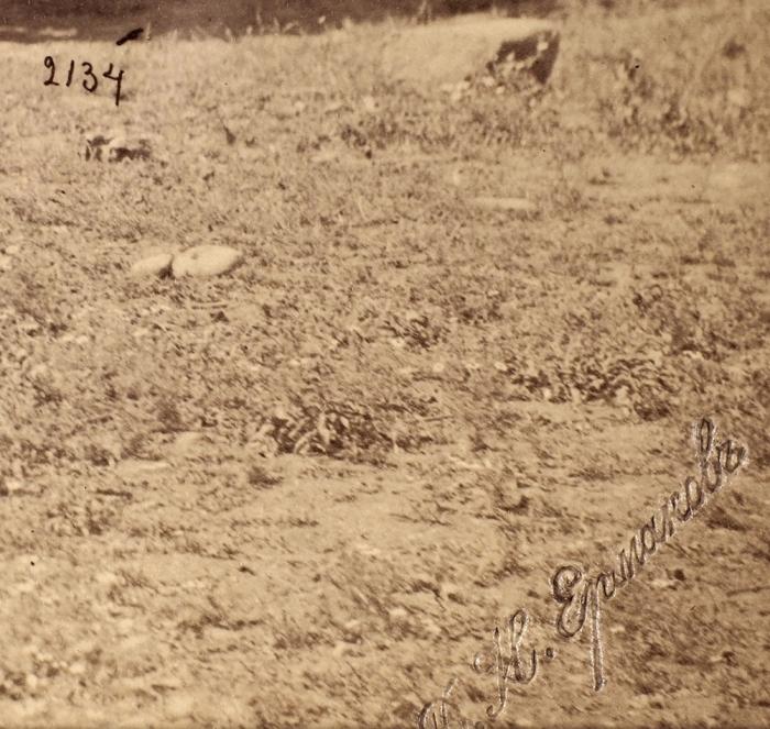 Фотография «Цихис-Дзири. Телеграфная станция наХуцубани»/ фотоателье Д.И. Ермакова. [Цихисдзири, 1880-1890-е гг.].