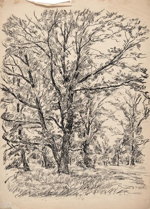 Львов Петр Иванович (1882–1944) «Деревья». 1930-е— 1940-е. Бумага, литография, 48x35,5см.